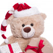 Smiling portrait teddy bear — Foto de Stock