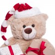 Smiling portrait teddy bear — Stock Photo