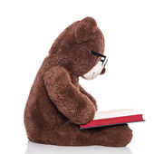 Teddy bear reading a christmas story — Stock Photo