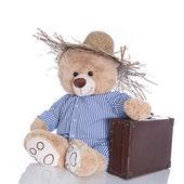 Teddy bear with straw hat — Stockfoto
