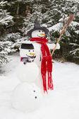 Snowman couple — Stock Photo