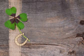 Clover and horseshoe — Stock Photo