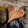 Wooden heart in nature — Foto de Stock