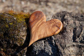 Wooden heart in nature — Stock Photo