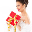 Lady with present on christmas — Stock Photo #34580431