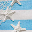 Stock Photo: Starfish maritime background