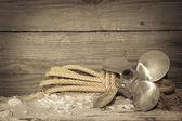 Námořní námořní šroub — Stock fotografie