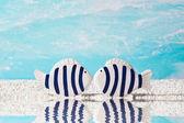 Blue fish in love — Stock Photo