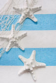 Starfish maritime background — Stock Photo