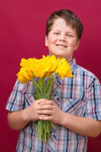 Tulips for you mom — Stock Photo