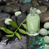 Green massage oil in a bottle — Stock Photo