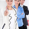 Portrait of young businesspeople - working in a team. — Stockfoto #36236063