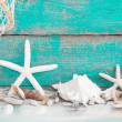 Starfish and seashells with fishing net — Foto de Stock
