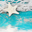 Starfish with fishing net — Stock Photo
