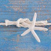 Rope tied to starfish — Stock fotografie