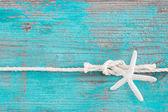 веревку, привязанную к морская звезда — Стоковое фото