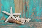 Starfish and seashells on shabby wooden background in turquoise — Stockfoto