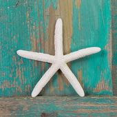 Close-up of a starfish and a turquoise wooden background — Stock Photo