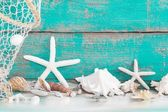 Starfish and seashells with fishing net — Stock Photo