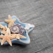 Starfishes in ceramic bowl — Stock Photo