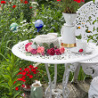 Table set in garden — Stock Photo