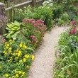 Flowers and path in the garden — Stock Photo