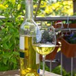 White wine served in garden — Stock Photo