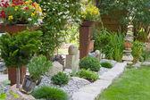 Garden design with flowers — Stock Photo