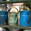 Old watering pots — Stock Photo