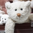 Teddy bear — Stock Photo #37426719