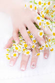 Hands with camomile flowers — Stock Photo
