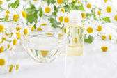 Camomile oil — Stockfoto