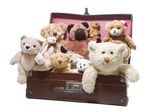 Plush teddy bears — Stock Photo