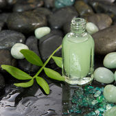 Green massage oil in a glass bottle — Stock Photo