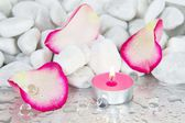 Rose petals and a lit candle for a spa decoration — Stock Photo
