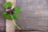 Moments of happiness - Stock Photo with four leaf clovers — Stock Photo