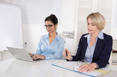 Two business woman successful in her job: happy teamwork. — Stock Photo