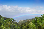 Rainbow over the rain-forest at the Island Dominican Republic. — Stock Photo