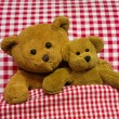 Two brown teddy bears lying in checkered bed - concept. — Stock Photo