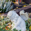 Autumn decoration on the tomb with white angel. — Stock Photo #47097583