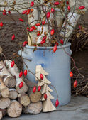 Natural advent or christmas decoration with rose hips. — Stock Photo