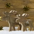Two wooden handmade reindeer for christmas decoration with natur — Stock Photo #50137535
