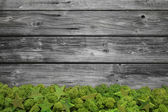 Wooden grey christmas background with moss for a frame. — Stock Photo