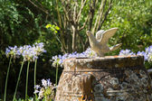 Garden decoration with a pigeon in the british cemetery in Corfu — Stock Photo