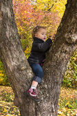 Cute little girl sitting in a tree in autumn. — Zdjęcie stockowe