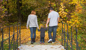 Happy young family in autumn making a walking tour. — Stock Photo