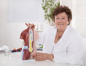 Portrait of happy older senior doctor explaining the human body  — Stock Photo