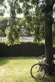 View to the Berlin Wall — Zdjęcie stockowe
