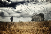 Man walking in a field — Foto de Stock