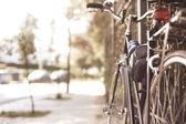 Vintage bicycle — Stock Photo